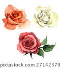 Wildflower rose flower in a watercolor style 27142379
