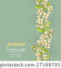jasmine vector  background 27168793