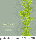 peppermint vector background 27168794