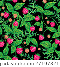 vector, raspberry, background 27197821