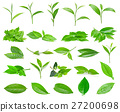 Green tea leaf isolated on white background 27200698