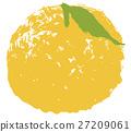 柚子(小柑橘类水果) 水果 柑桔类 27209061
