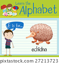 english, alphabet, kid 27213723