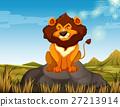 Wild lion sitting on the stone 27213914