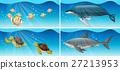 动物 鱼 鲨鱼 27213953