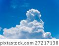 구름 27217138
