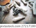 珊瑚 碎片 分裂 27217180