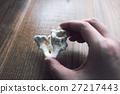 珊瑚 碎片 分裂 27217443
