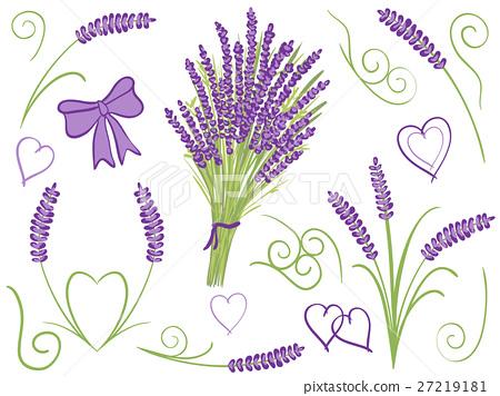 Illustration of lavender design elements 27219181