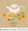 calendula tea  vector illustration 27222512