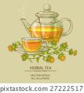 safflower tea vector illustration 27222517