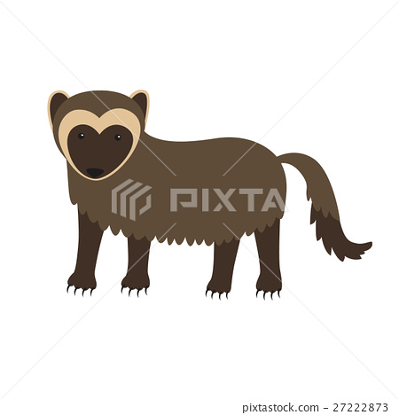 Wolverine animal cartoon character isolated on 27222873