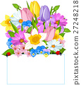 Colorful Fresh Spring Flowers 27248218