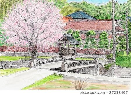 Sakura and Jizodo 27258497