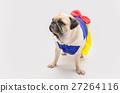 spoiled female pug dog dressed like a princess 27264116