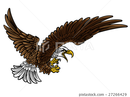 Eagle Swooping 27266429