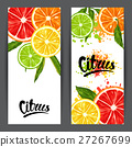 Banners with citrus fruits slices. Mix of lemon 27267699