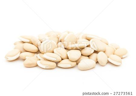 風信子豆(風信子豆):風信子豆(扁豆) 27273561
