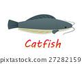 Cartoon catfish in flat style, vector 27282159