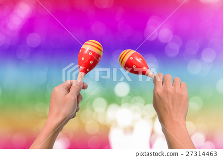 Hand holds maracas 27314463