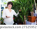 Customer choosing best yucca 27325952