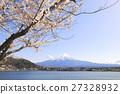 富士山 櫻花 櫻 27328932
