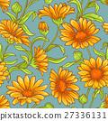 開花 金盞草 植物 27336131