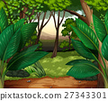 Forest scene with lots of trees 27343301