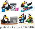 Toucan doing different activities 27343404