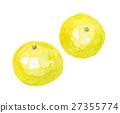 柚子 水彩 水彩画 27355774