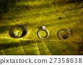 wedding rings sitting on top of the leaf 27358638