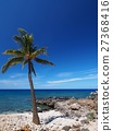 Coast of Hawaii island 27368416