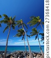 Coast of Hawaii island 27368418