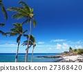 Coast of Hawaii island 27368420