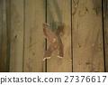 An asterisk ninja in the wall 27376617