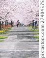 櫻花和櫻花 27404575
