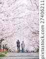 แนวต้นไม้ริมถนน,ดอกซากุระบาน,ซากุระบาน 27406211