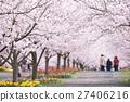 櫻花和櫻花 27406216