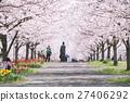 櫻花和櫻花 27406292