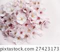 Cherry Blossom 27423173