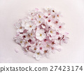 Cherry Blossom 27423174