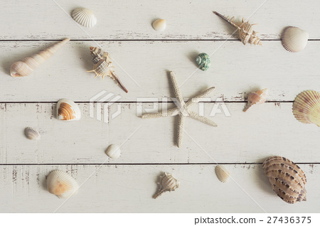 various shell on white wooden background 27436375