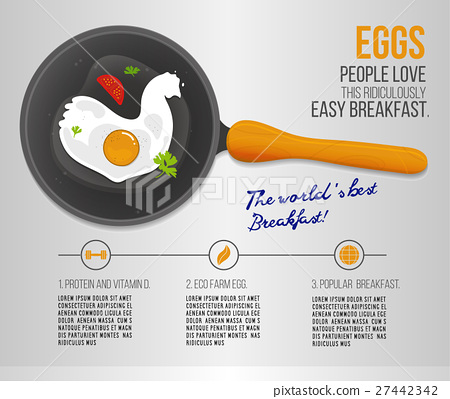 Vector chicken egg fried in a pan. Infographics 27442342
