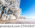 Frozen footpath on snowy meadow next to few trees 27443047