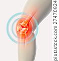 knee,joint,bone 27470924