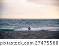 seagull watching ocean at beach 27475568