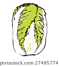 大白菜 水彩 水彩畫 27485774