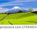 富士山 翠綠 鮮綠 27494834