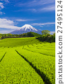 富士山 翠綠 鮮綠 27495124