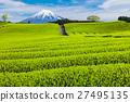富士山 翠绿 鲜绿 27495135